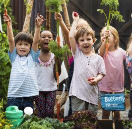 outdoor kid party